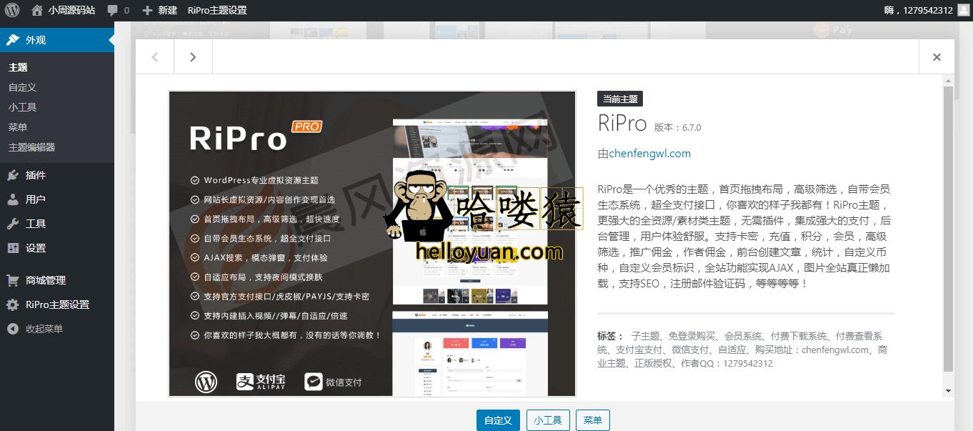 RiPro6.7破解版,日主题6.7免授权下载地址