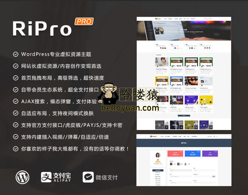 RiPro主题V5.2原版破解版
